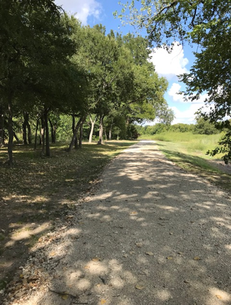 Country Ridge Walking Trail